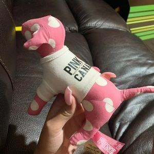 vs pink canada dog
